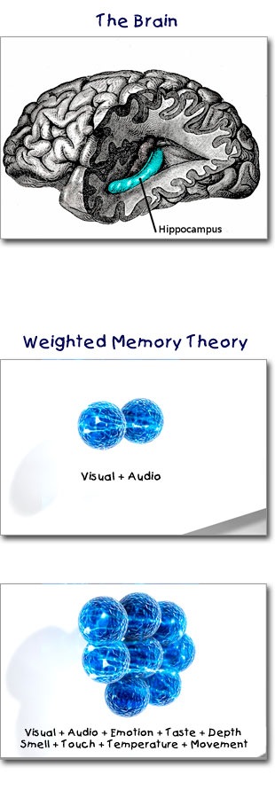 Diagrams of the Weighted Memory Theory